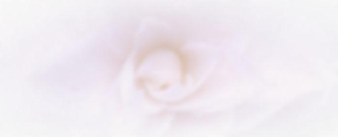 P_20200412_151941_edited_edited.jpg