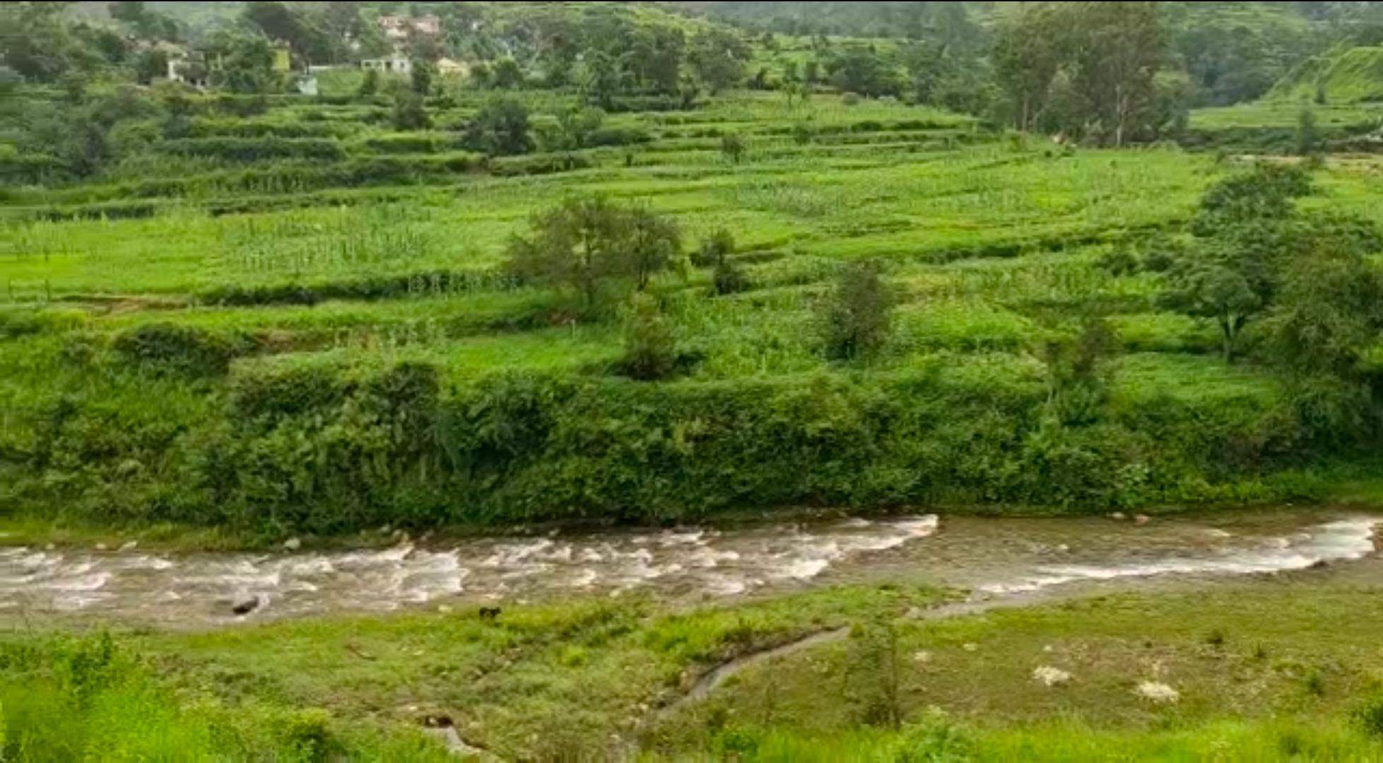 River along the farms
