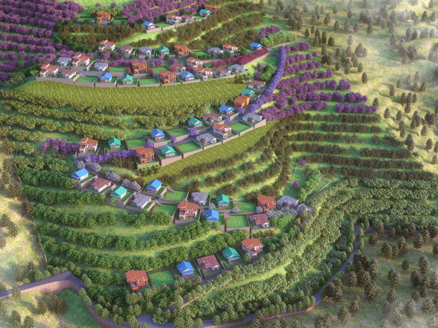 Estate Aerial View.