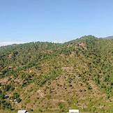 Plot Panorama