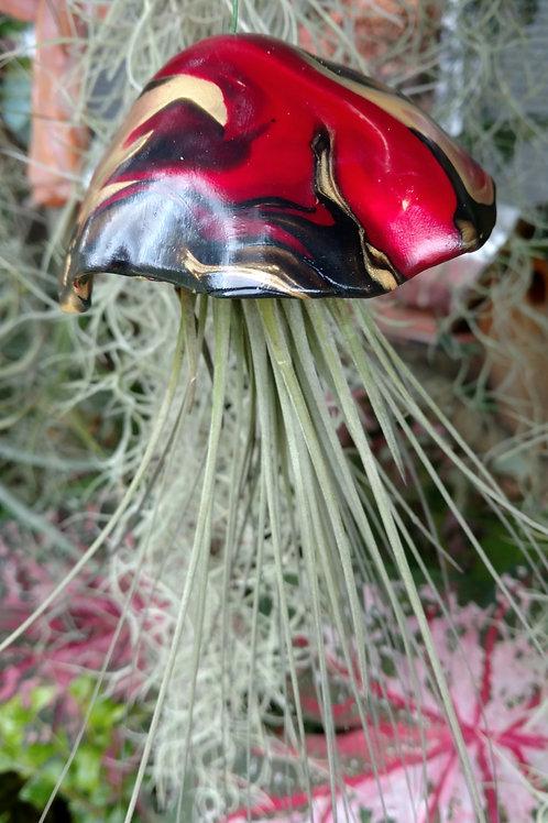 Jellyfish Air Plant holder