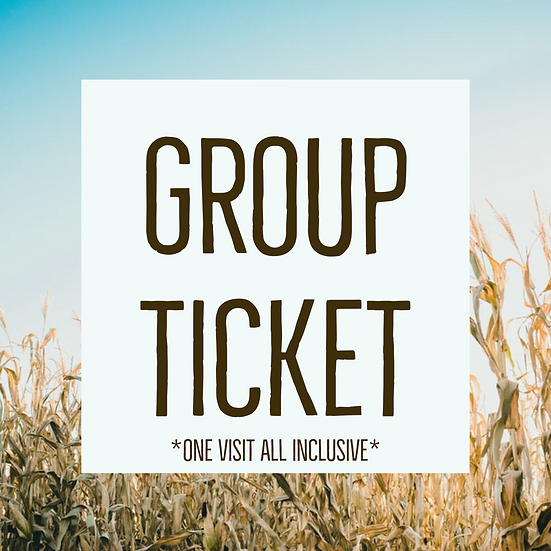 Set of 15 Group Ticket