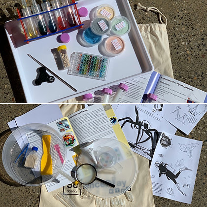 The BIG ONE Science Kit: Experiments 1-20