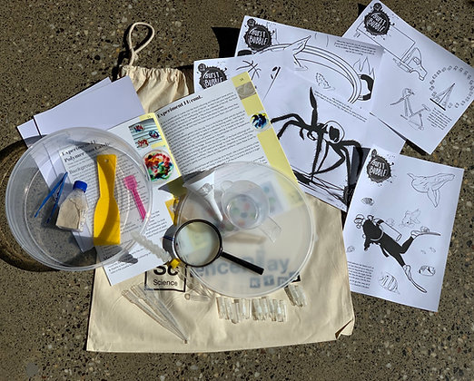 Science Kit 2: Experiments 11-20