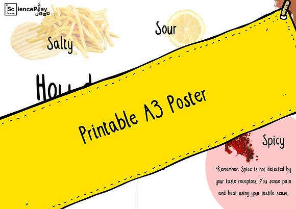 Printable A3 Poster - How does it taste