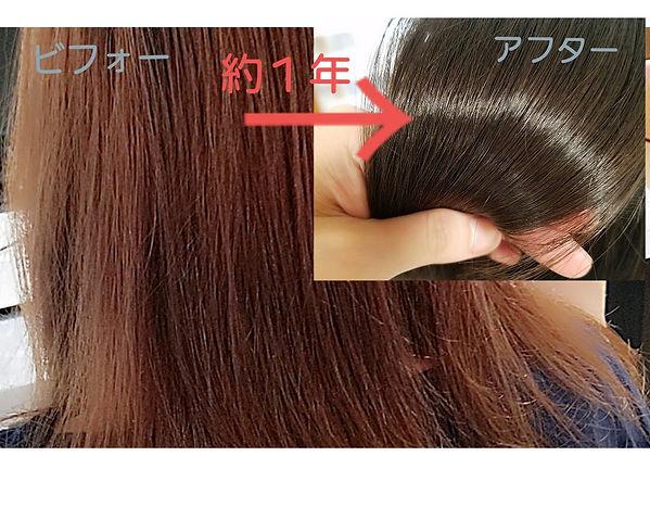 髪きれい.jpg