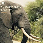 Lord Elephant_3.jpg