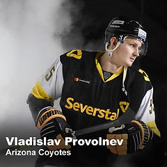 Vladislav Provolnev v2 40.30.jpg