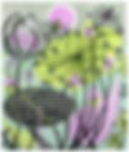angie lewin 2.jpg