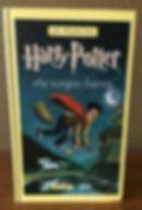 Basque Harry Potter Translation Philosopher's Stone