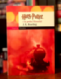 Harry Potter Book 1 in Catalan, Adult Edition
