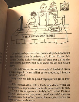 Harry Potter Internal Illustration, French 2nd Print Premovie Chamber of Secrets La Chambre des Secrets Book 2