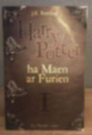 Harry Potte Breton Philosopher' Stone Book 1