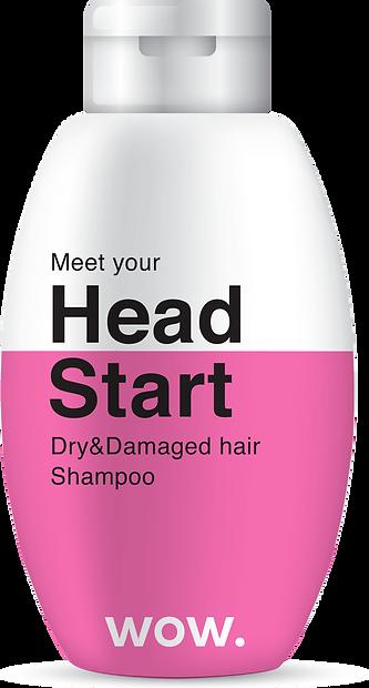 shampoo 1.png