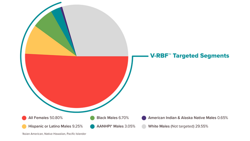 V-RBF Targeted Segments.png