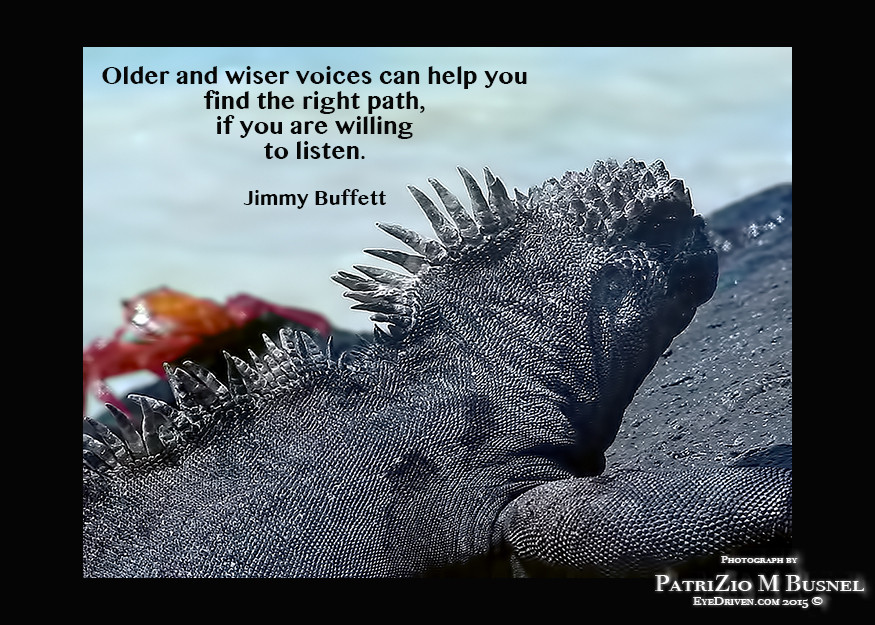 Older and wiser voices...