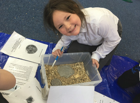 Fun with Fossils