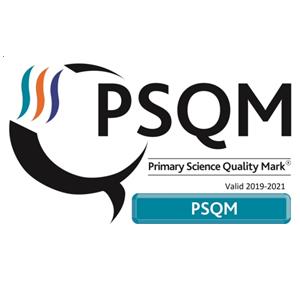 Eskdale Awarded Primary Science Quality Mark
