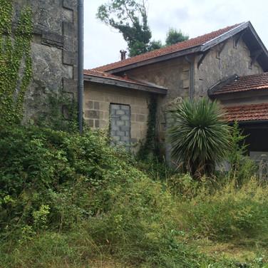 Manoir Saussus Choked By Vegetation