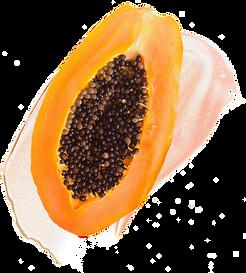 73-738762_files-slider-tile-papaya-papay