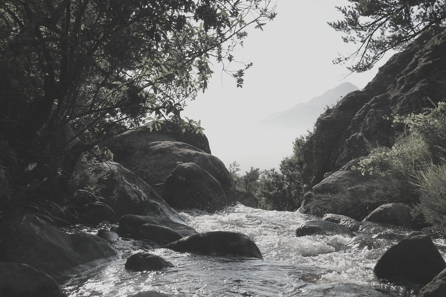 River_edited.jpg