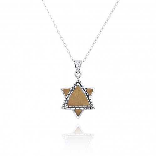 [NP11627-JRSL - GP] Gold Plated  Star of David Pendant with Jerusalem Ston