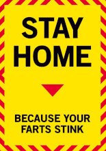 Stay At Home Because Your Farts Stink Greeting Card