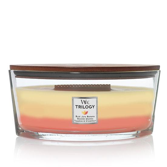 WoodWick Tropical Sunrise Trilogy Hearthwick Ellipse Candle