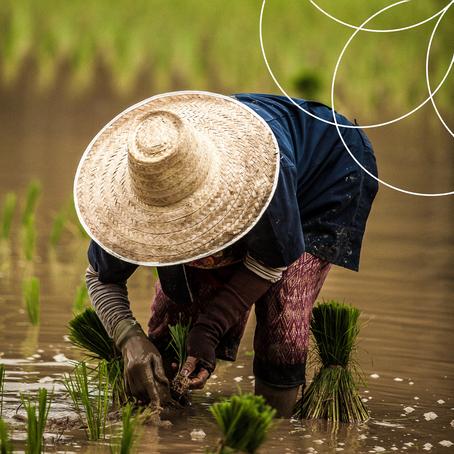 Southeast Asia AgriTech Landscape 2019