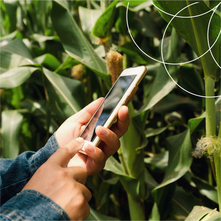 AgriTech Solutions - Solving for Scale and Stickiness