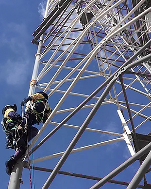 Tower Worker (W@H) and Rescue Training