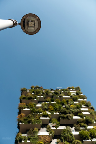 Street lamp and vertical forest
