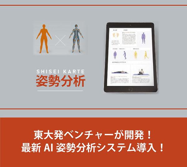SHISEI_KARTE_iPad01.jpg