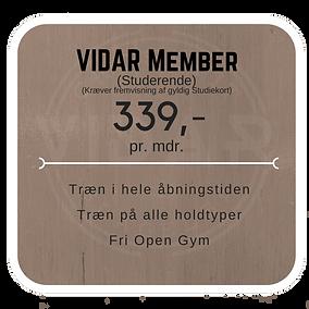 VIDAR Member (6)1.png