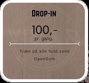 Vidar Drop-in.png