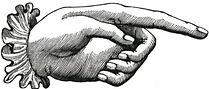Female hand.jpg