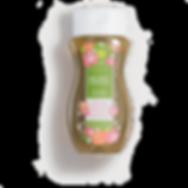 Sea Salt and Avocado Scentsy Body Wash