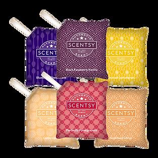 6 Scentsy Scent Paks