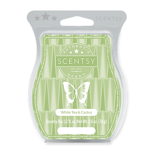 White Tea and Cactus Scentsy Bar