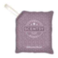 Welcome Home Scentsy Scent Pak