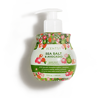 Sea Salt and Avocado Scentsy Hand Soap