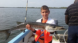 pêcher le barracuda katakalousse