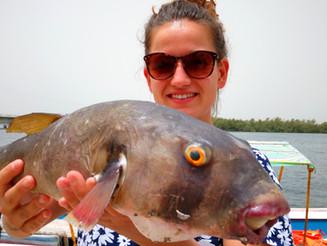 Belle journée de pêche