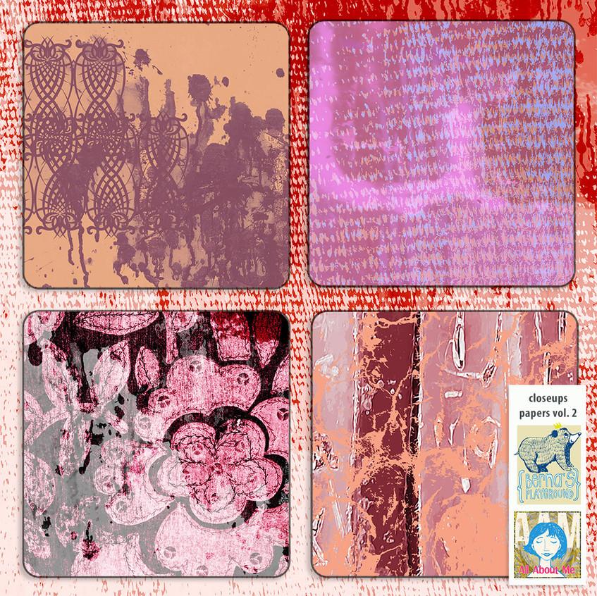 bdate-04-I-am-Sally-pp2-closeup02