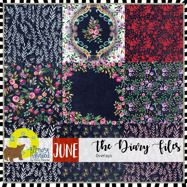 bdate-TDF-June-overlays-prev600