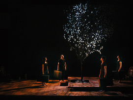 REPRESENTATION OF THE CHERRY ORCHARD