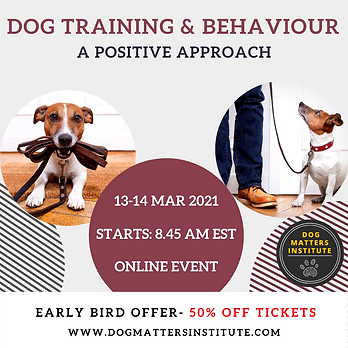 Dog training Event IG.png
