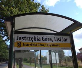 3.Nazwy_w_języku_polskim_i_kaszubskim.j