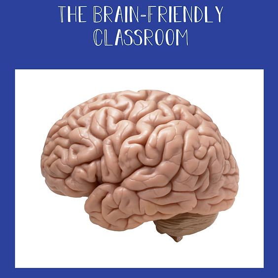 Creating Brain-Friendly Classrooms