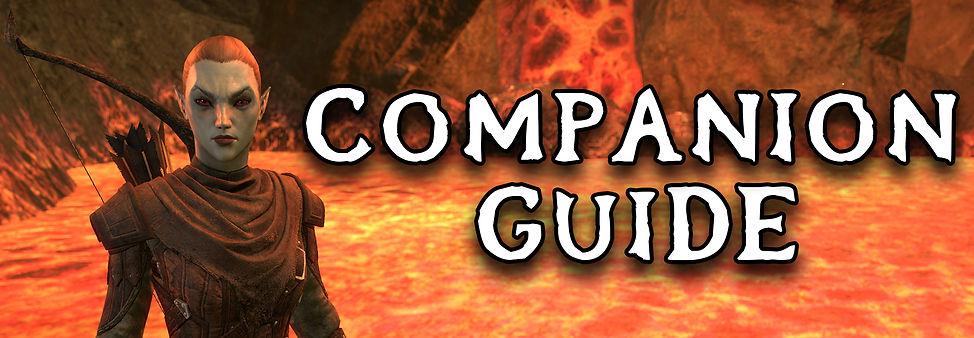 Companions Guide Header - 1.jpg